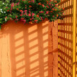 Stock Photo: Sunlight through lath