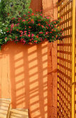 Sunlight through lath — Stock Photo