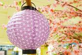 Paper lantern — Stock Photo