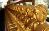 Gloden buddha statue — Stock Photo