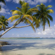 Cook Islands - South Pacific — Foto de Stock