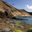 Volcanic landscape - Bartolome in the Galapagos Islands — Stock Photo