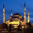 Blue Mosque - Istanbul — Stock Photo #16880323