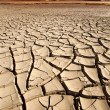 Stock Photo: Dry Cracked Earth - Sossusvlei - Namibia