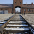 Stock Photo: Birkenau Nazi Concentration Camp - Poland