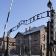 Birkenau Nazi Concentration Camp - Poland — Stock Photo #16886617