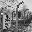 Auschwitz Concentration Camp - Poland — Stock Photo #16888531