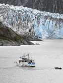 Alaska - Margerie Glacier — Stock Photo