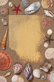 Seashell Border - Space for text — Stock Photo