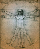 Vitruvian Man - Leonardo da Vinci — Stock Photo