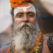 Hindu Sadhu - Varanasi - India — Stock Photo