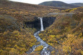 Svartifoss Waterfall - Skaftafell National Park- Iceland — Stock Photo