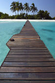 Pathway to Paradise — Stock Photo