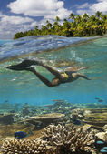 Tropical Reef - French Polynesia — Stock Photo