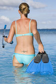 Snorkelling - South Pacific Ocean — Stock Photo