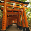 Torii - Fushimi Inari Taisha - Kyoto - Japan - Stock Photo
