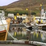 フーサヴィーク - アイスランド — ストック写真