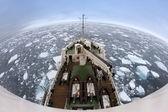 Ghiaccio marino fuori del litorale di spitsbergen — Foto Stock