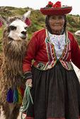 Anciana local - cusco - perú — Foto de Stock