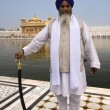 Sikh Pilgrim - Amritsar - India — Stock Photo