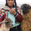 Peru - Cuzco — Stock Photo