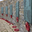Falklands War Memorial - Stanley - Falkland Islands — Stock Photo