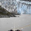 Glacier bay Nationaalpark in alaska — Stockfoto #17213043