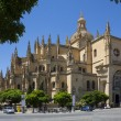 Segovia Cathedral - Castilla-y-Leon - Spain. — Stock Photo