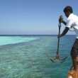 The Maldives in the Indian Ocean — Stock Photo #17346133