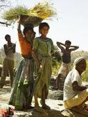Rajasthan - India — Stock Photo