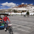 Potala Palace - Lhasa - Tibet Autonomous Region of China — Stock Photo #17356433