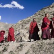 Buddhist Monks - Tibet — Stock Photo