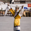 Potala Palace - Lhasa - Tibet — Stock Photo #17356299