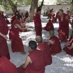 Sera Monastery - Tibet — Stock Photo #17357225