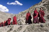 Buddhist Monks - Tibet — Stock Photo