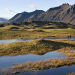 Landscape near Hofn - Iceland — Stock Photo #17363793