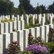 War Cemetery - The Somme - France — Stock Photo #17366273