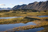 Landscape near Hofn - Iceland — Stock Photo