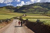 Countryside high in the Andes - Urubamba - Peru — Stock Photo
