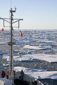 Sea ice in the Arctic Ocean — Stock Photo