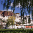 Stock Photo: PotalPalace - Lhas- Tibet