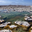 Stock Photo: ChaxLagoon - AtacamSalt Flats - Chile