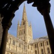 Stock Photo: Norwich Cathedral - Great Britain