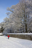 Winter Snow in Northern England — Stock Photo