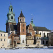 Krakow - Royal Cathedral - Wawel Hill - Poland — Stock Photo #17504803