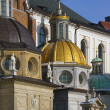 Krakow - Royal Cathedral - Wawel Hill - Poland — Stock Photo