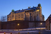 Colline de wawel de cracovie - château royal - - pologne — Photo