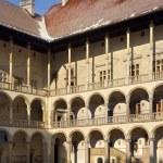 Krakow - Royal Castle - Wawel Hill - Poland — Stock Photo #17533327