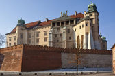 克拉科夫-皇家城堡-瓦维尔山-波兰 — 图库照片