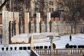 Koningen monument - krakau - polen — Stockfoto